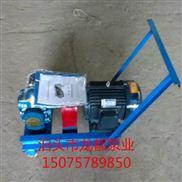 2CY-5/0.33移动式齿轮泵/机油泵 龙都选型