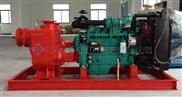 固定式柴油机自吸排污泵
