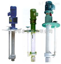 FYS型FYS型耐腐蚀液下泵