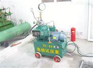 供应2D-SY电动试压泵 高性能电动试压泵 专业电动试压泵研发