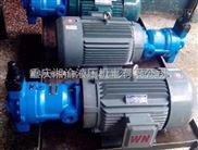 25YCY-Y180L-4液压机油泵25PCY-Y180L-4