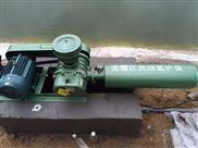 江洲牌水產養殖工業專用二葉羅茨風機