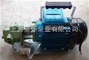 wcb-75p微型不锈钢手提齿轮油泵