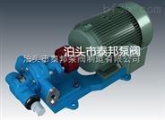 2CY-5/0.33齒輪油泵泊頭市泰邦泵閥