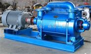 结构简单的SK型水环式真空泵