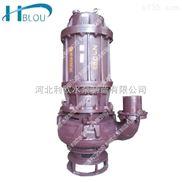 利歐40ZJQ-21-9.5-B潛水式渣漿泵化工泵