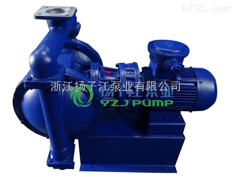 直批DBY-100系列摆线式不锈钢电动隔膜泵 品牌行业厂家