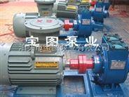 YPB滑片式防爆汽油泵的参数及价格咨询宝图泵业