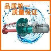 熔盐泵 GY50-250