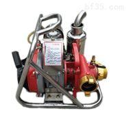 背負式汽油森林消防泵AG250FFP