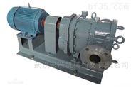 WS+20/15 APV-轉子泵R系列